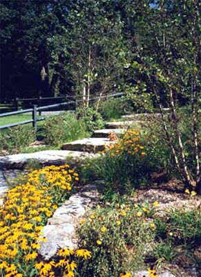 Local near me landscape contractors we do it all low for Local landscaping companies