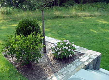 local near me landscape company we do it all low cost