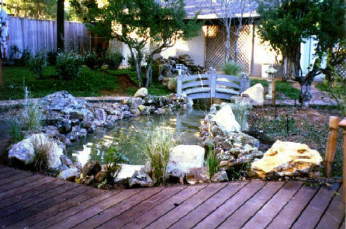 Pond landscaping company landscape water features clean for Koi pond maintenance service