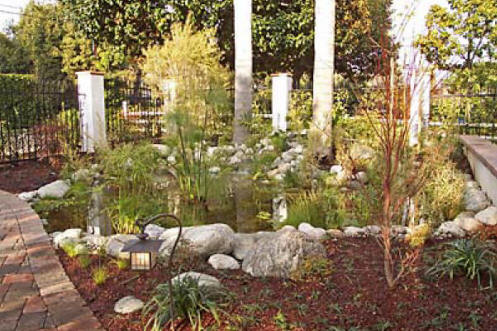 Charlotte nc pond builders we do it all low cost for Koi pond construction cost