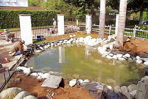 Local near me pond builders we do it all low cost for Fish pond installation