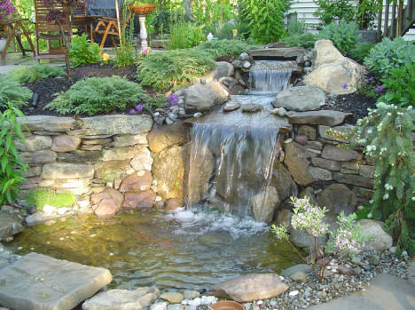 Local pond repair clean company we do it all low cost for Garden pond do you need a pump