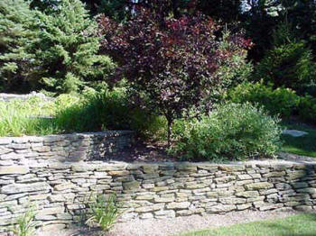 Best Local Near Me Residential Landscaping Service Company