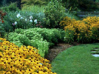Local landscape designers local residential landscape for Local landscape designers