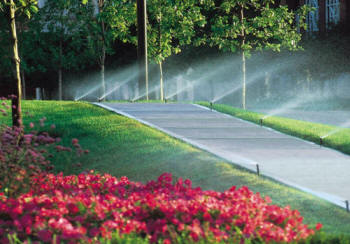 Local Near Me Yard Lawn Sprinkler Installer Contractors 2020 Low
