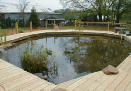 Landscaping contractor installs builds ponds water for Koi pond construction cost