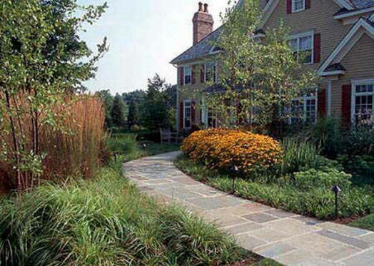 Residential Landscape Design Fees : Landscape