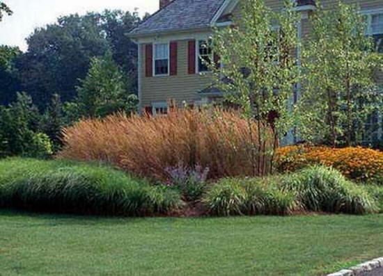 Residential Landscape Design Fees : Landscaping hardscaping