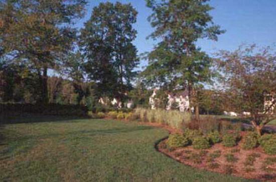 Columbia Sc Landscaping Contractors Cost Columbia