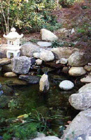local near me pond builders install waterfalls 2018 we On koi pond builders near me