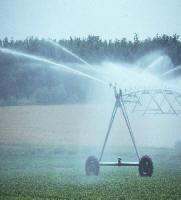 Local Near Me Yard Lawn Sprinkler Installer Contractors